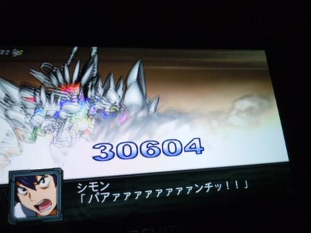 DSCN4009