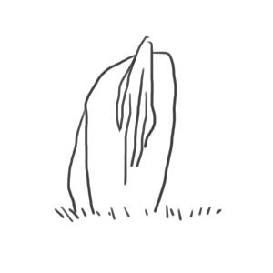 Uma_shiro