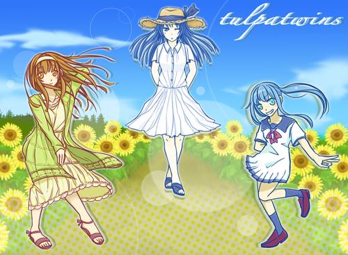 summer_NML