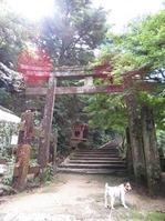 170918宮島弥山 (8)