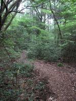 170611大野自然観察の森 (76)