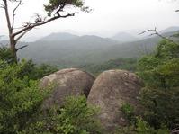 170611大野自然観察の森 (27)