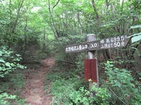 170611大野自然観察の森 (80)
