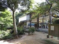 170827宮島弥山 (9)