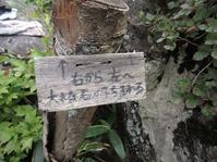 170811大峯山 (55)