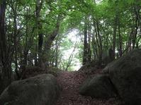 170611大野自然観察の森 (55)