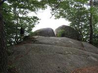 170611大野自然観察の森 (65)