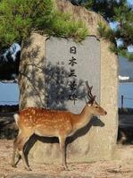 170827宮島弥山 (2)