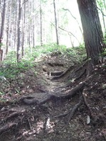 170811大峯山 (5)