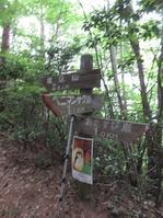 170611大野自然観察の森 (74)