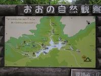 170611大野自然観察の森 (88)