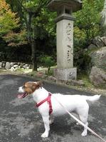 170918宮島弥山 (5)