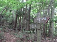 170611大野自然観察の森 (52)