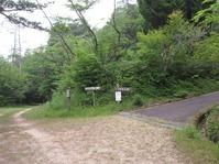 170611大野自然観察の森 (6)