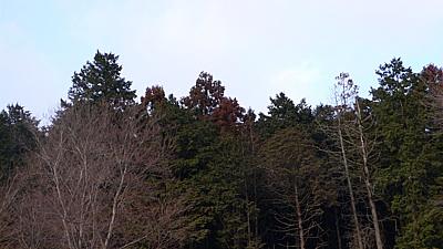 9bd727c0.jpg