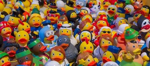 toy-ducks-535335_640