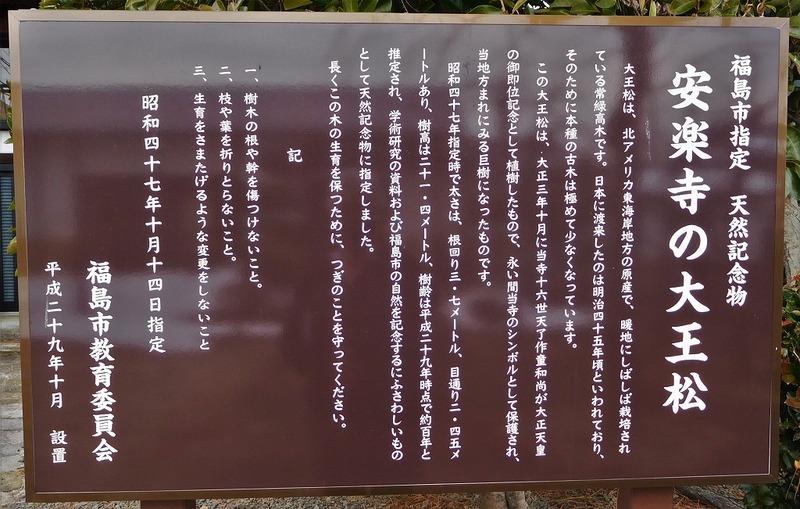 s-DSCN0042