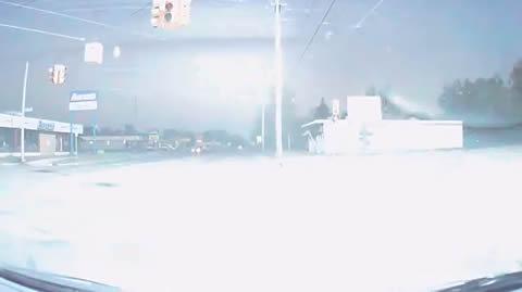 Guy Witnesses Goose Falling From Sky