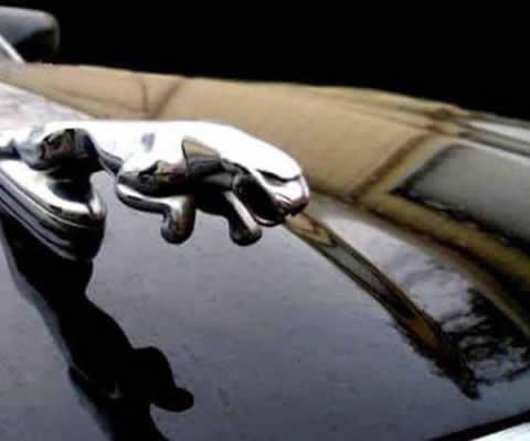 Jaguar emblem_s