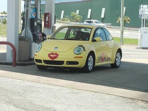 ufu_beetle