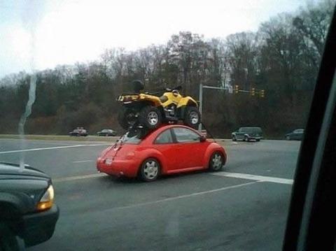 beetle_atv