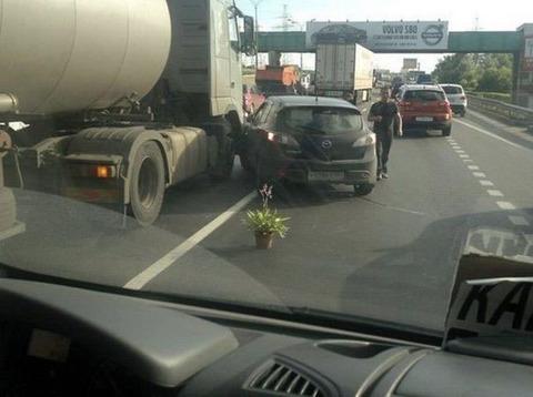road_corn