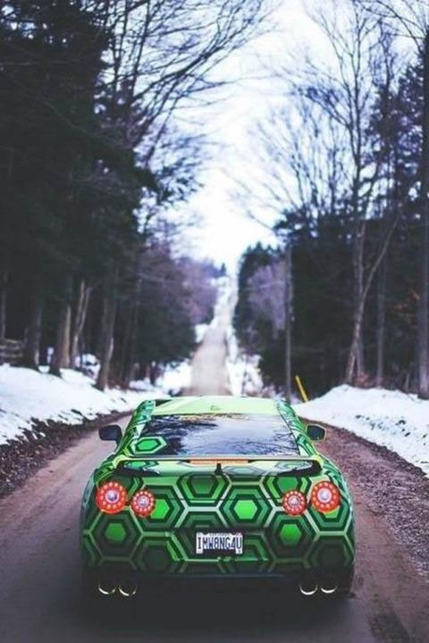 turtle_GT-R