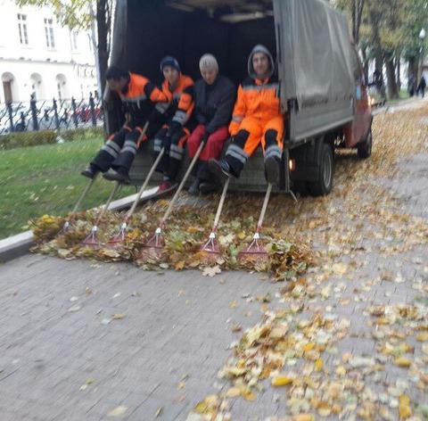 leaf_clean