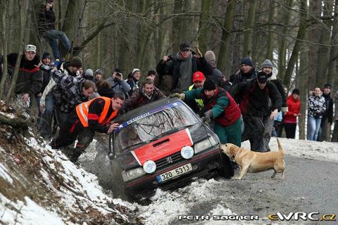 rally_dog