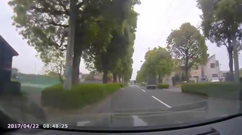 reverse_crash_bus