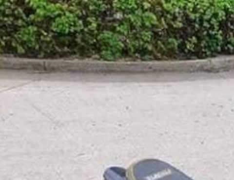 【画像】スクーター・トライク