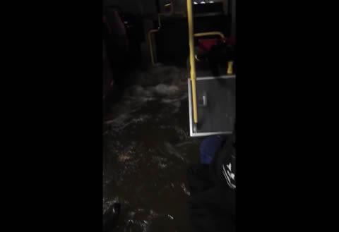 Metro Bus Floods in Houston
