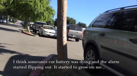 Dying car alarm drops a beat
