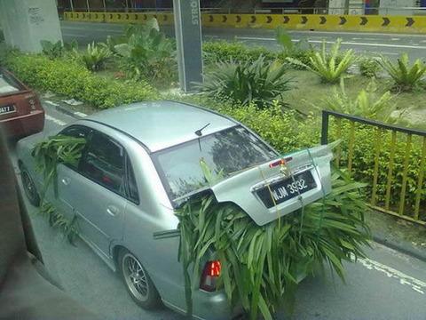 grass_car