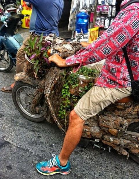woody_bike