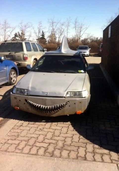 shark_car