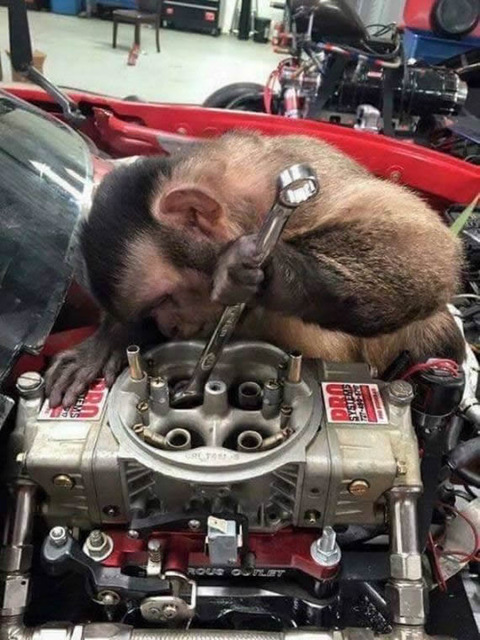 mechanic_monkey