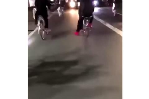 bycycle_bosozoku