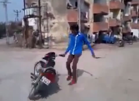 motorcycle_cow_fail