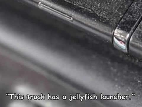 jellyfish_launcher_s