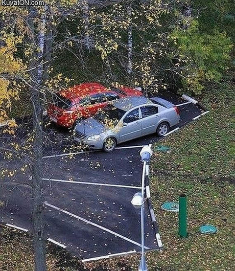 parking_line