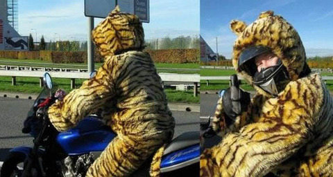 tiger_suits