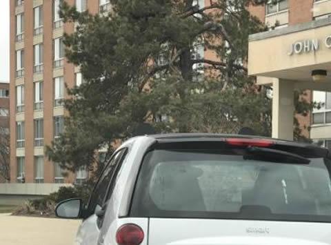 【画像】BIG CAR