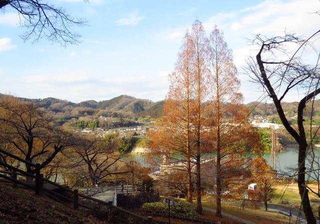 17津久井湖城山公園