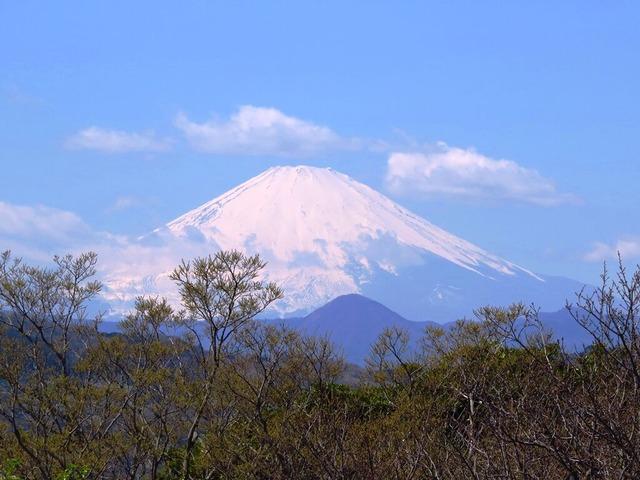 14富士山