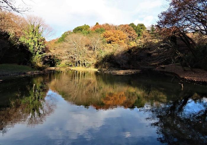 18谷戸山公園