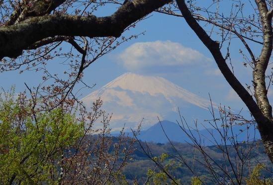 16富士山