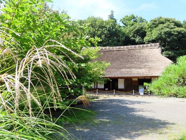 10泉の森民家園