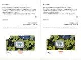 2020_08ニッケ株主優待選択
