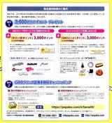 2014_09GMOペパボ株主優待